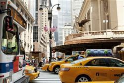driving new york crazy