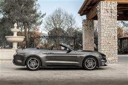 5.0 V8 GT [Custom Pack 4] 2dr Auto Petrol Convertible