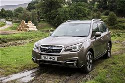 Car review: Subaru Forester